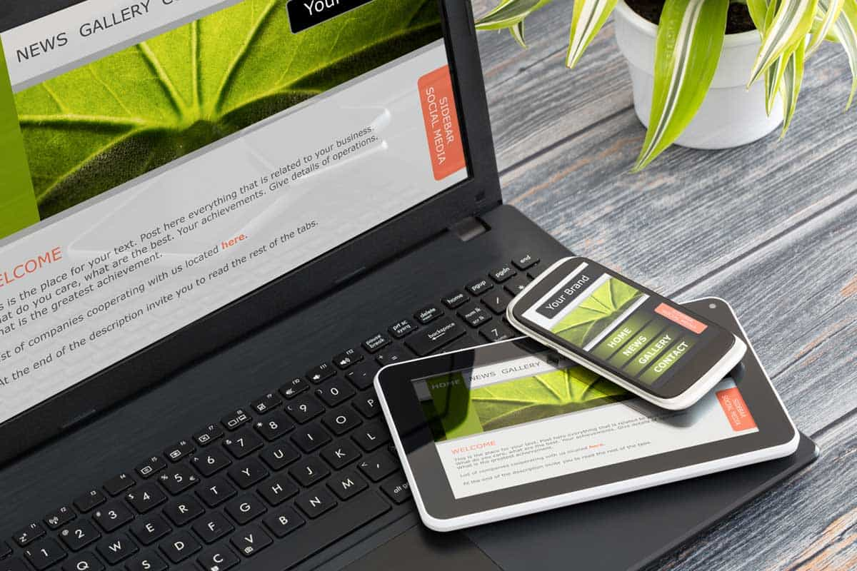 Best Website Designing and Social Media Services