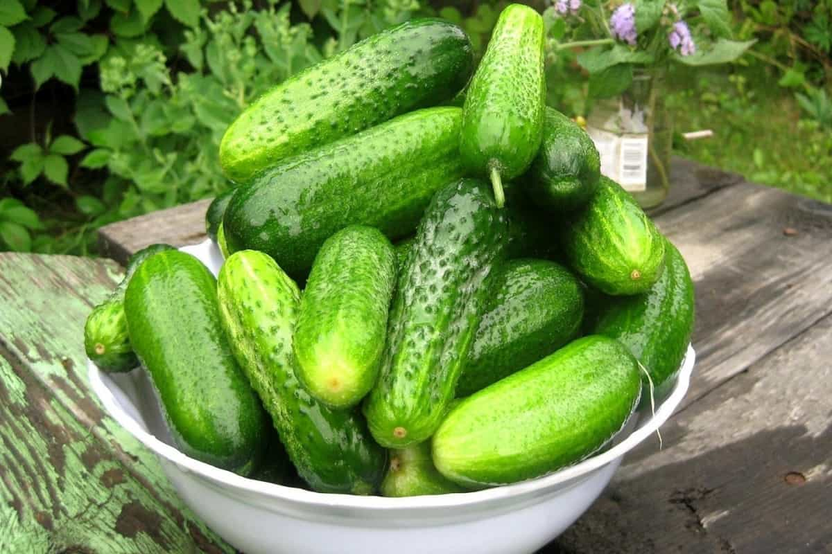 11 Amazing Uses for Cucumber