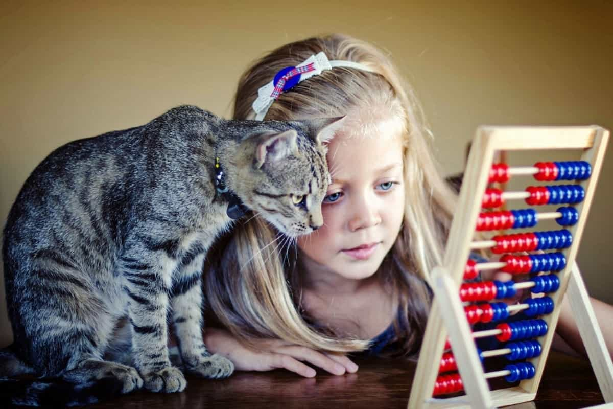 7 Effective Ways To Make Math Extra Fun for Young Children